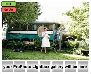 vintage picnic wedding theme inspiration