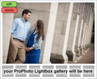 Engagement Photos at University of Washington UW campus