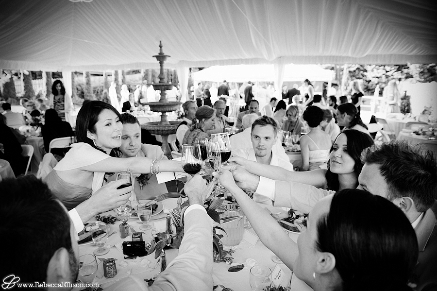 wedding party cheers to the bride and groom during wedding reception at Jardin Del Sol,