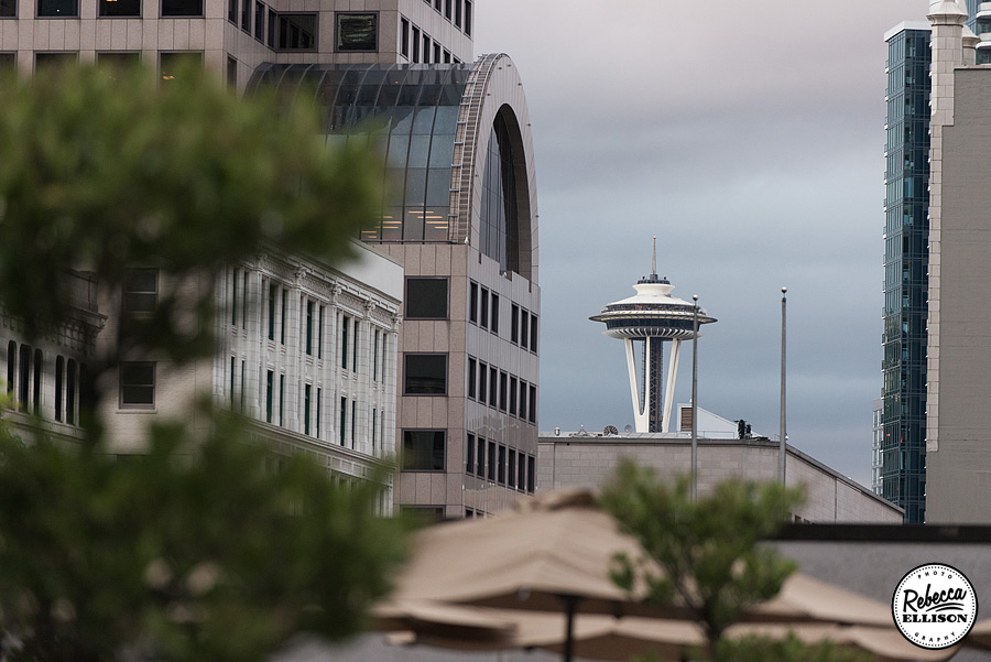 The space needle peeks above the seattle skyline photographed by Seattle photographer Rebecca Ellison