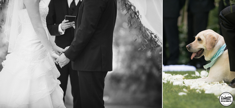 Bride and groom hold hands during their wedding ceremony while their dog looks on photographed by Seattle wedding photographer Rebecca Ellison