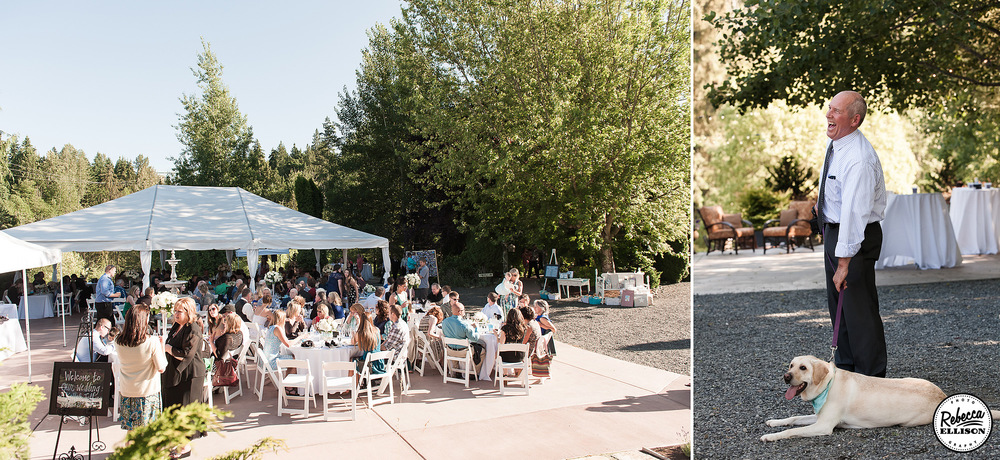 Wedding reception at an outdoor garden wedding featuring a large paved brick patio and dog cools off in the shade