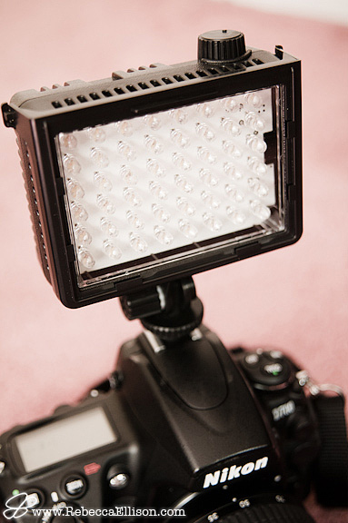 video light used by Rebecca Ellison Photography