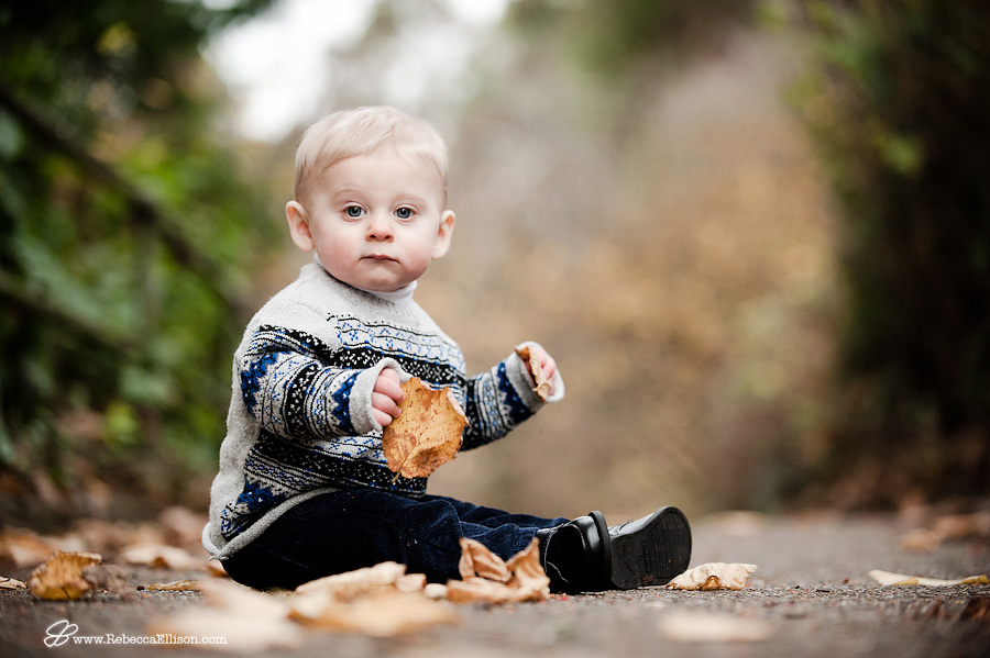 fall portrait of boy in yellow leaves