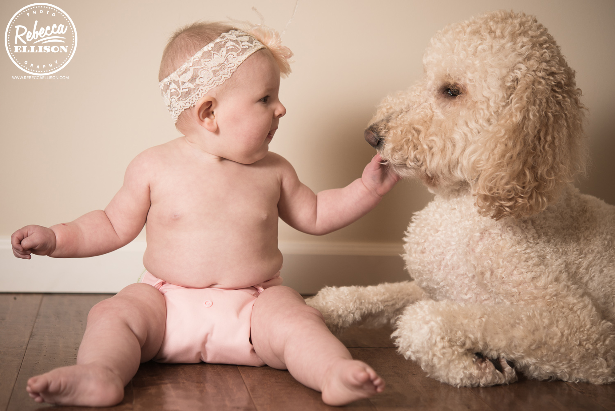 Baby and dog at an in home portrait session photographed by Rebecca Ellison Photography