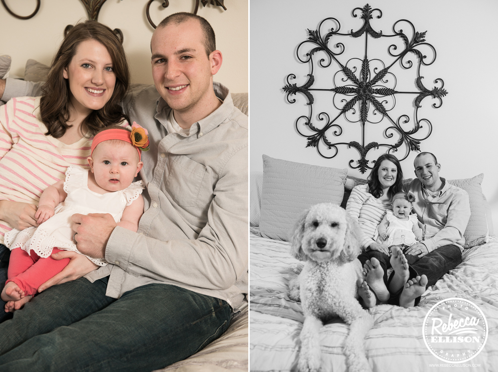 A family and their dog during a lifestyle photography session in Bellevue, Washington photographed by Rebecca Ellison Photography