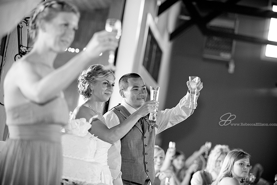 Snohomish wedding photographer Rebecca Ellison captures bride and groom being toasted by guests at their Hidden Meadows wedding venue reception