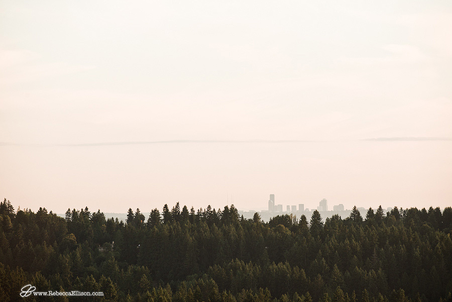 view of Seattle at sunset looking over trees from the view point of a hot air balloon by seattle wedding photographer Rebecca Ellison