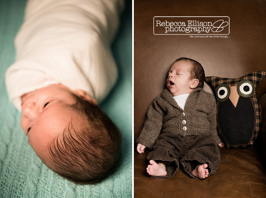 Indoor newborn portraits of a swaddled baby and a baby in a brown sweater with a toy owl photographed by Rebecca Ellison Photography