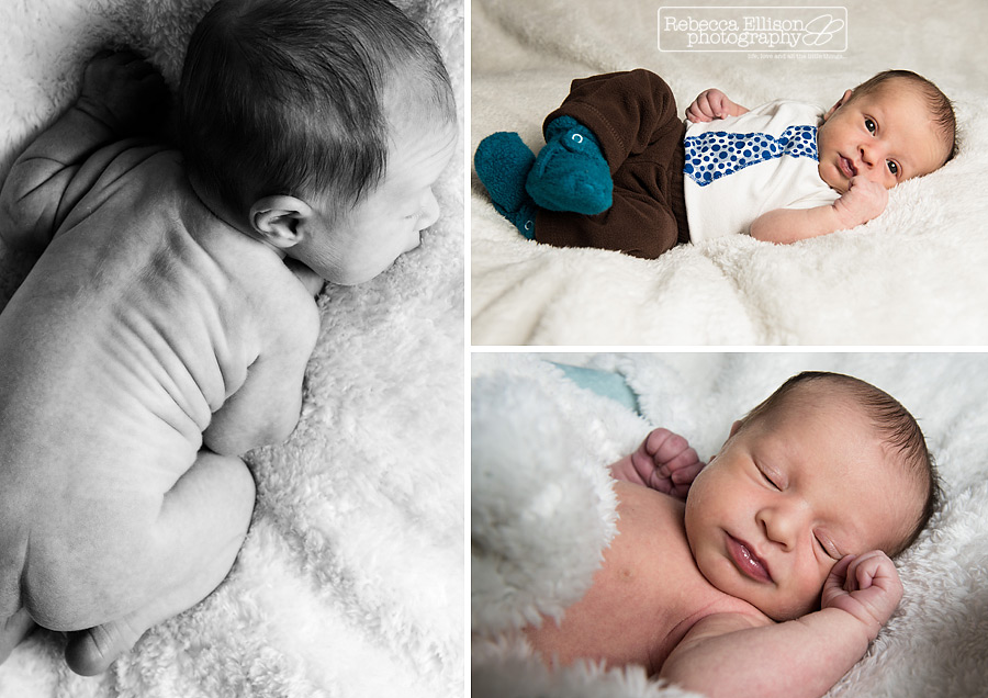 Newborn boy on a fuzzy white blanket photographed by Seattle newborn photographer Rebecca Ellison