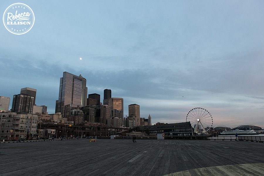 seattle-waterfront-view-002