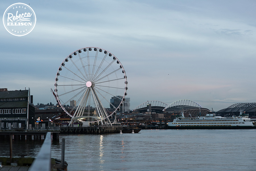seattle-waterfront-view-003