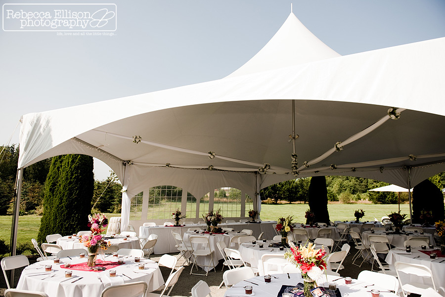 Dinner under a tent at Tazer Valley Farm with Pink and blue details