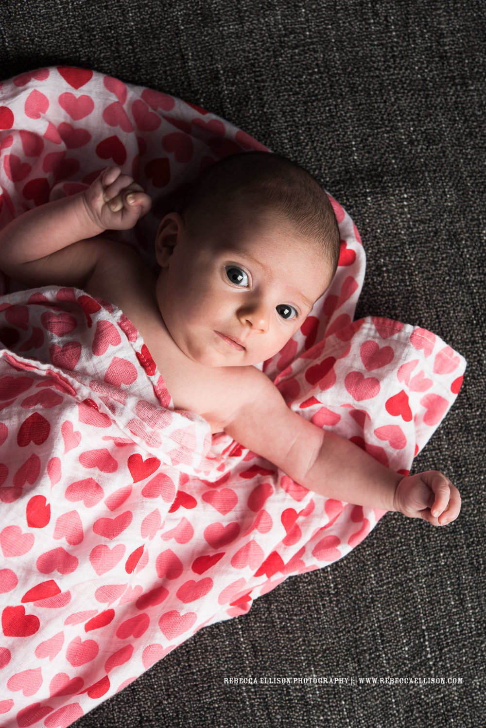 Baby Fiona has arrived!