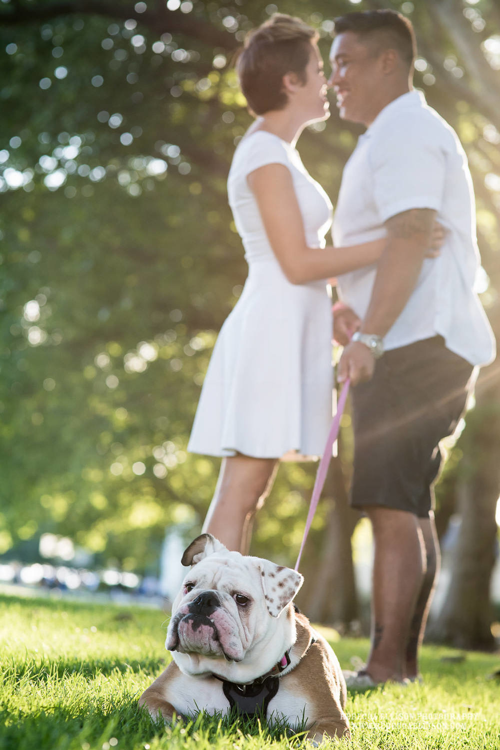 Fun summer engagement session with their dog at Greenlake in Seattle.