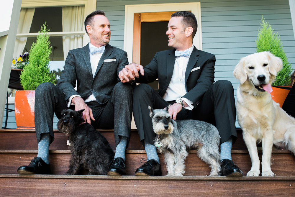 Two grooms wedding portraits with dogs