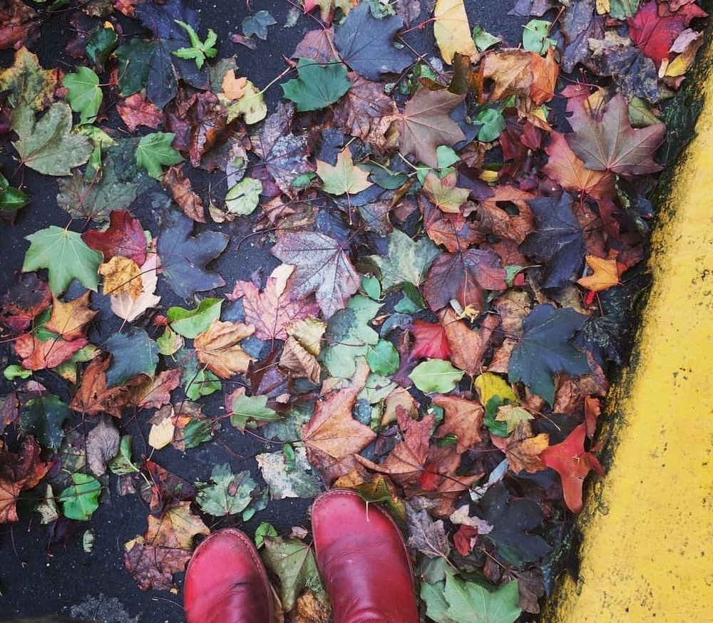 leaves and boots.JPG