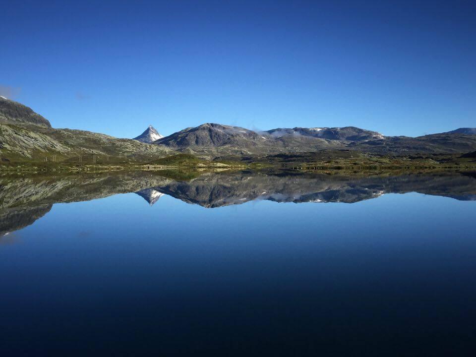 Foto: Vidar Moen/Årdal Jeger-og Fiskeforeining