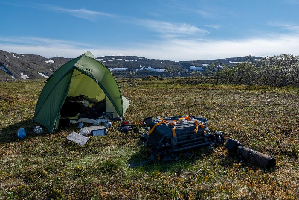 My tent near Hamningberg.
