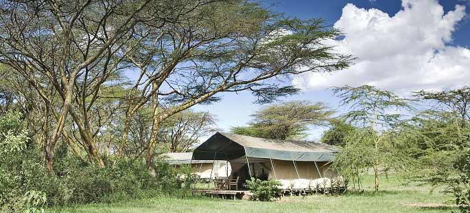 mara-camp-large.jpg
