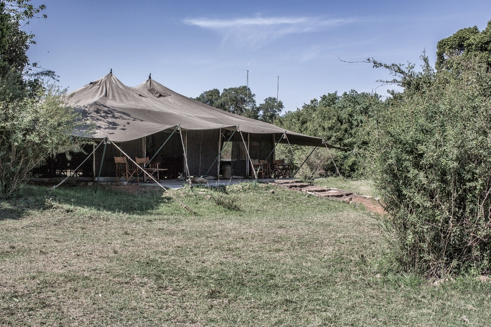 porini-lion-camp-gallery-image-61-1444932078.jpg