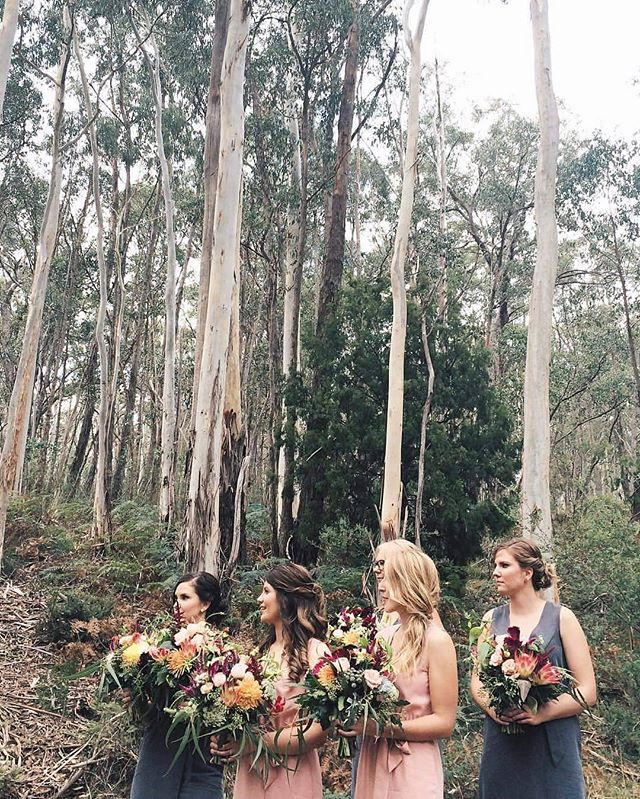 The prettiest Australian backdrop to the most beautiful wedding @louweesa 🙌. 📷 @hunter_gatherer_maker 👌 #wedding #sinclairegully