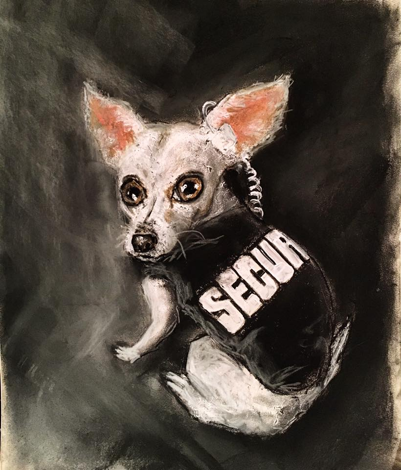 """Chihuahua's in Charge"""