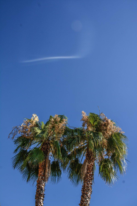 Ibiza-Yoga-Retreat-Summer-Holiday-067.jpg