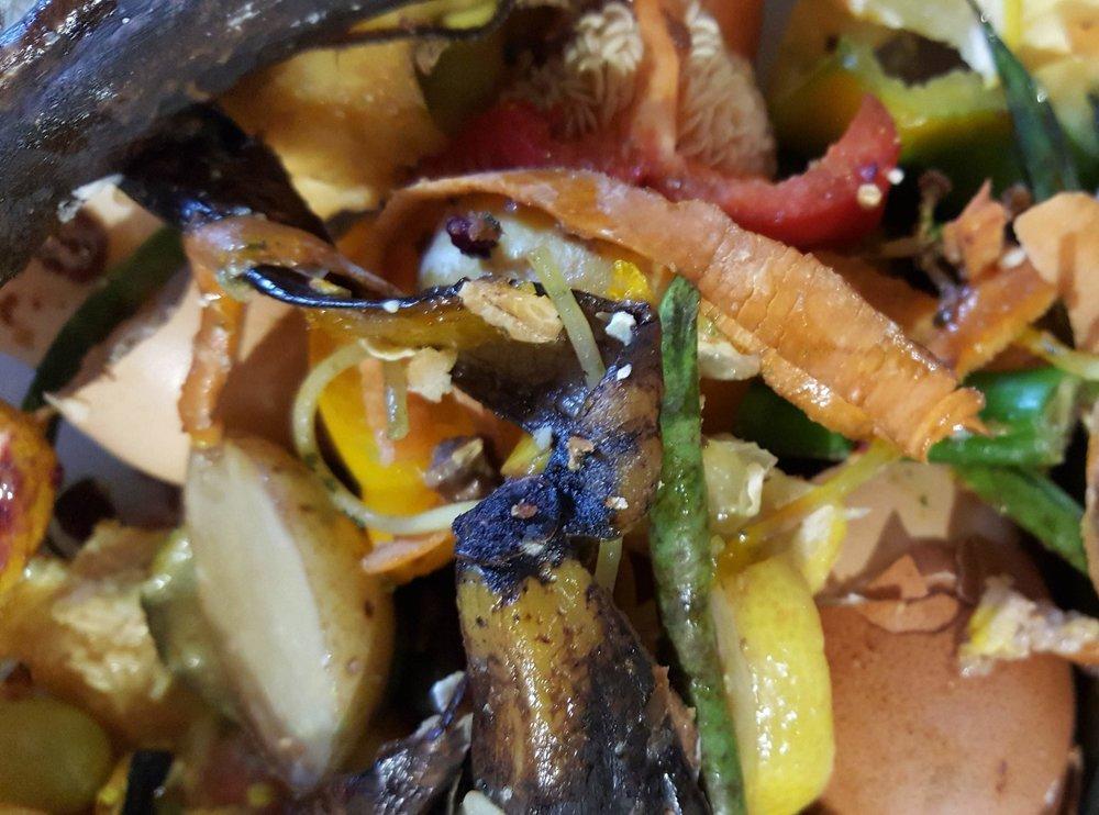 kitchen waste.jpg