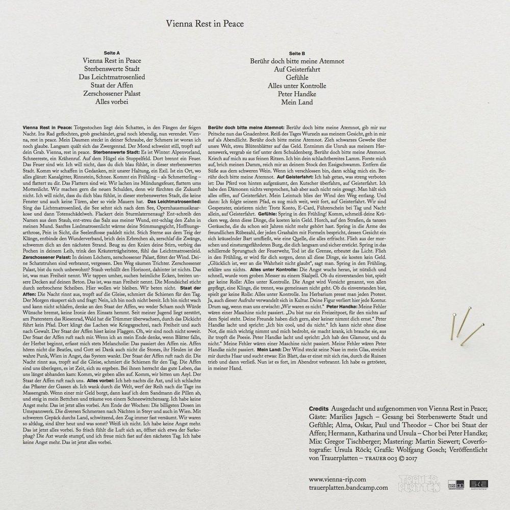 VRIP-Cover-Vinyl-iA0714a-1.jpg