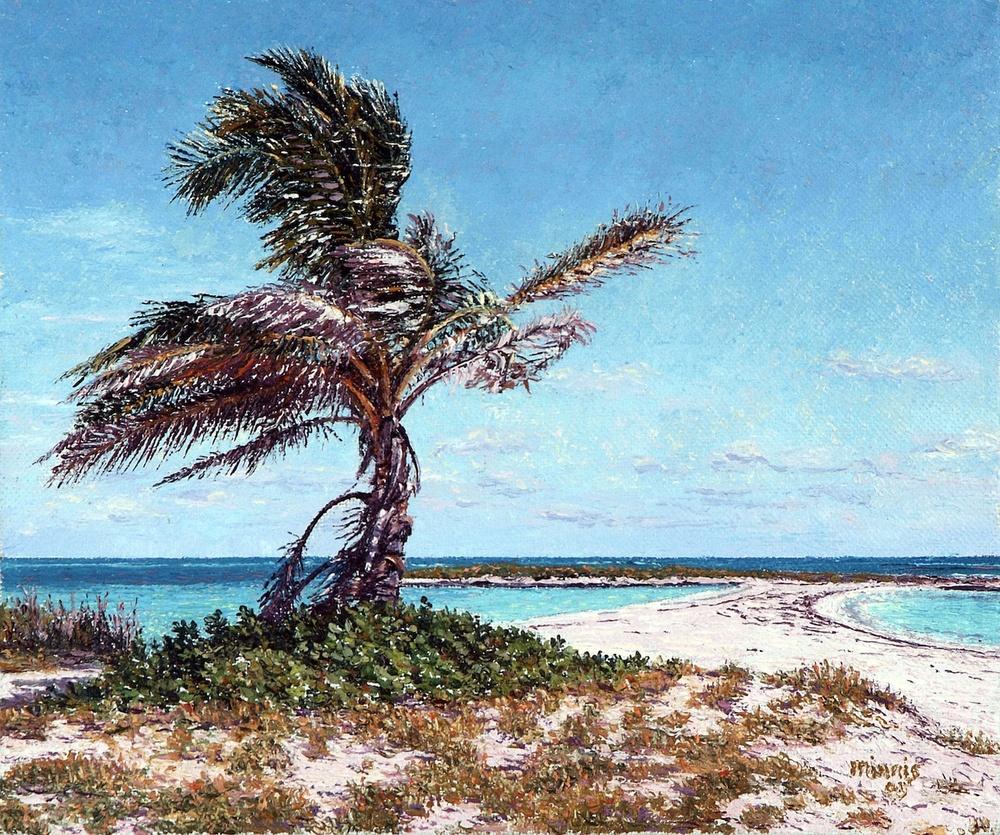 Twin Cove Palm.jpg