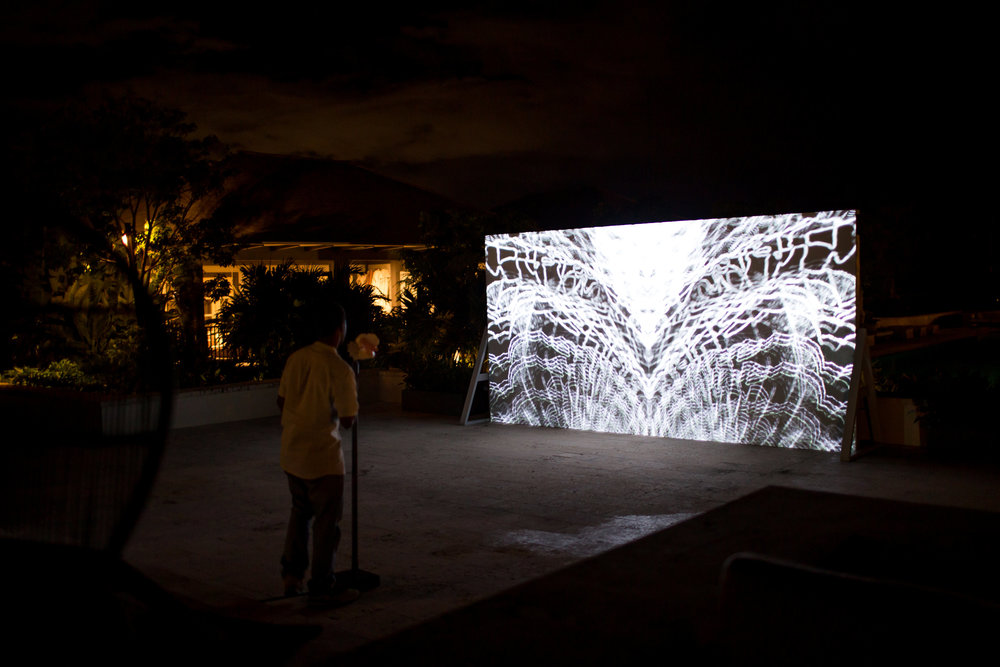 "David Gumbs' interactive installation ""Blossom"" which allowed the audience to participate by blowing into a conch shell."