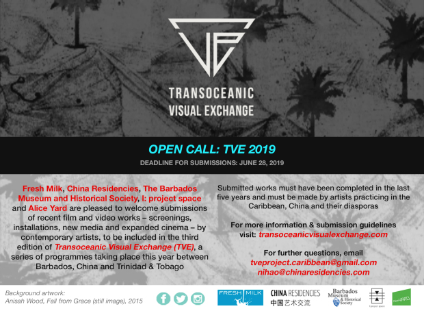 OPEN CALL: TRANSOCEANIC VISUAL EXCHANGE 2019 — NATIONAL ART