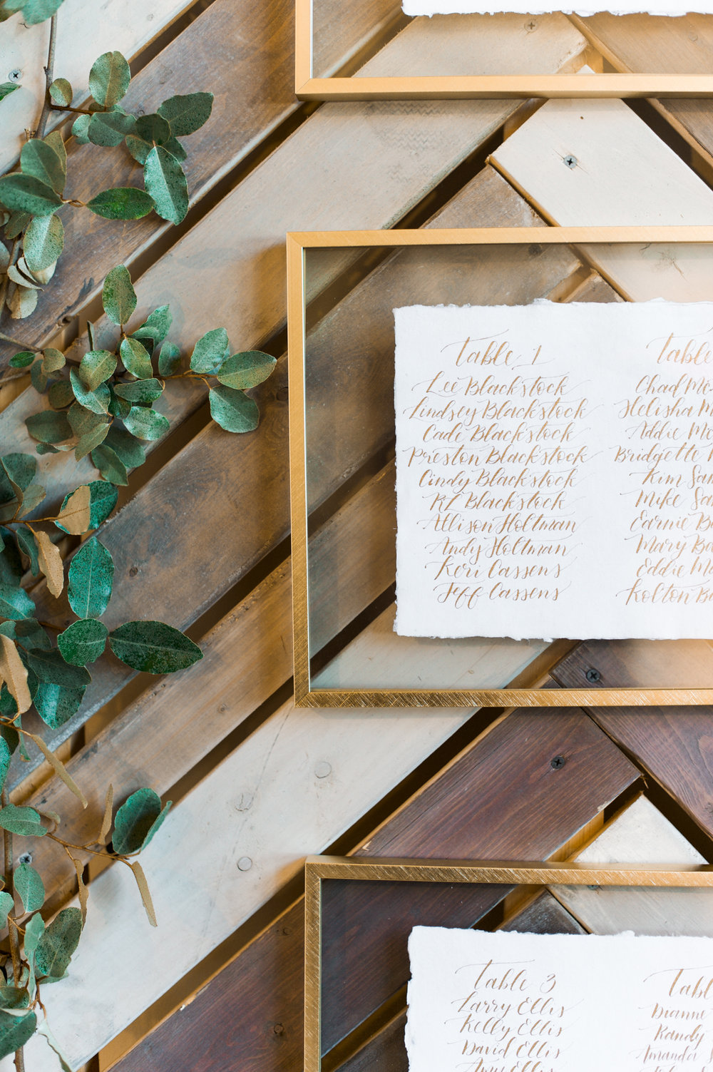 Meredith & Josh Vendor Files - Shannon Skloss Photography-55.jpg