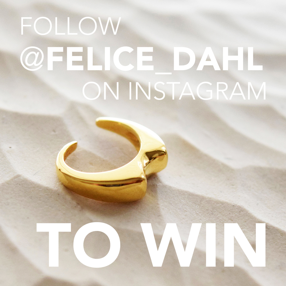 FELICEDAHL_FOLLOWTOWIN_INSTAGRAM