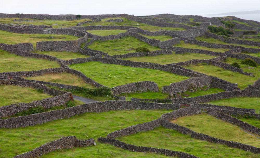 The iconic stone-walled paddocks of Inis Oírr (Photo by Andrew Evans)