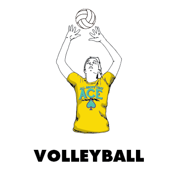 volleyball design gallery