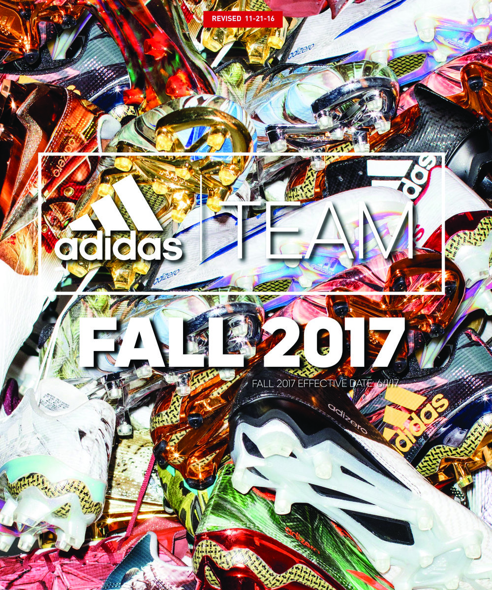 adi team fall 2017.jpg