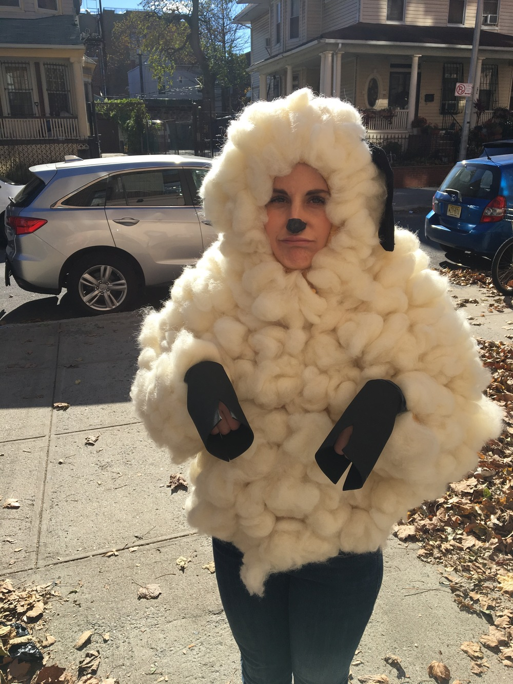 I'm a sheep for some videos