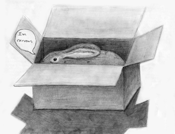 There was a brief moment when I wanted to make cartoons about getting a pet rabbit. I didn't really follow through with it but the few i made were fun. This one is about how I brought her home from the shelter in a cardboard box.
