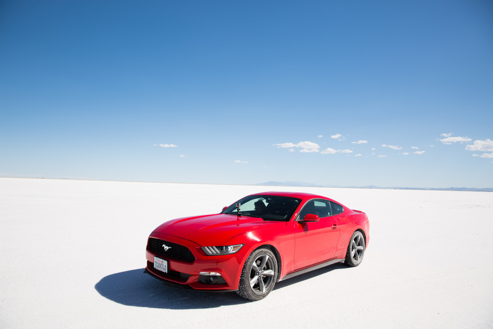 We may have hired an incredible red Mustang...
