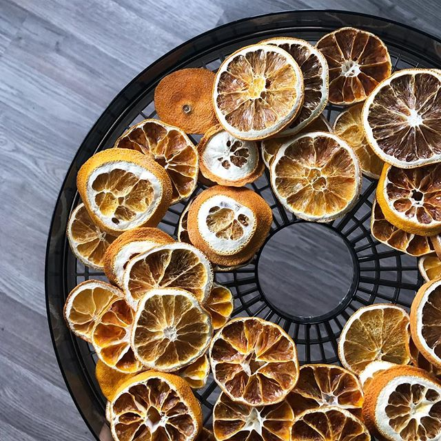 Dehydrator = new best friend. These dried oranges have me 😍😍😍
