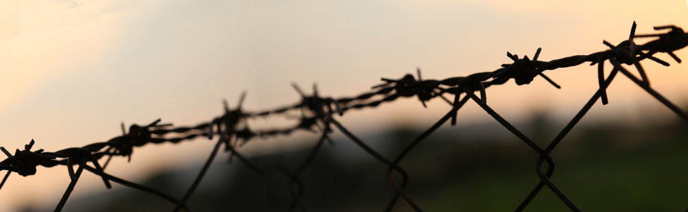 LST image barbed wire.jpg