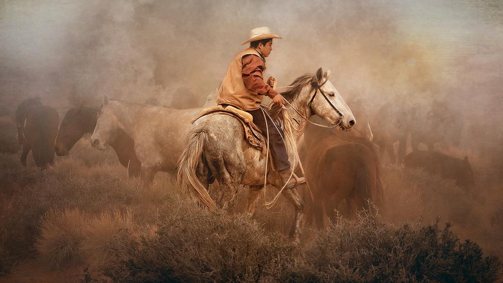 Navaho Roundup