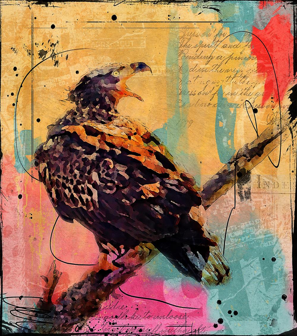 Eagle Scream