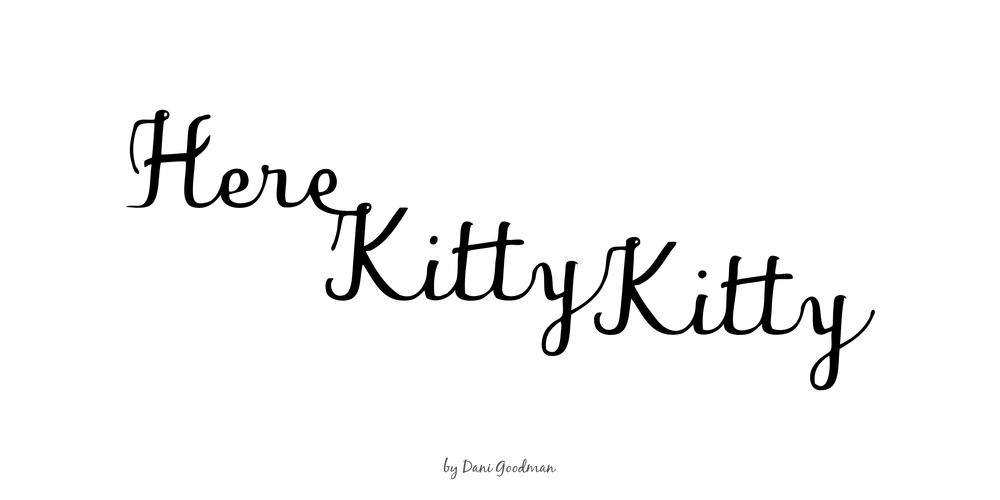 cat-lady-0_o.jpg