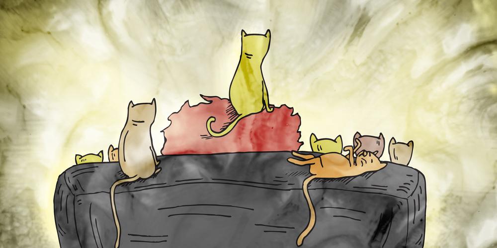 cat-lady-2_o.jpg