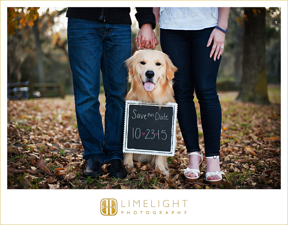 Wedding | Bride | Groom | Philipe Park | Safety Habor | Florida |    Step Into The Limelight | Limelight Photography