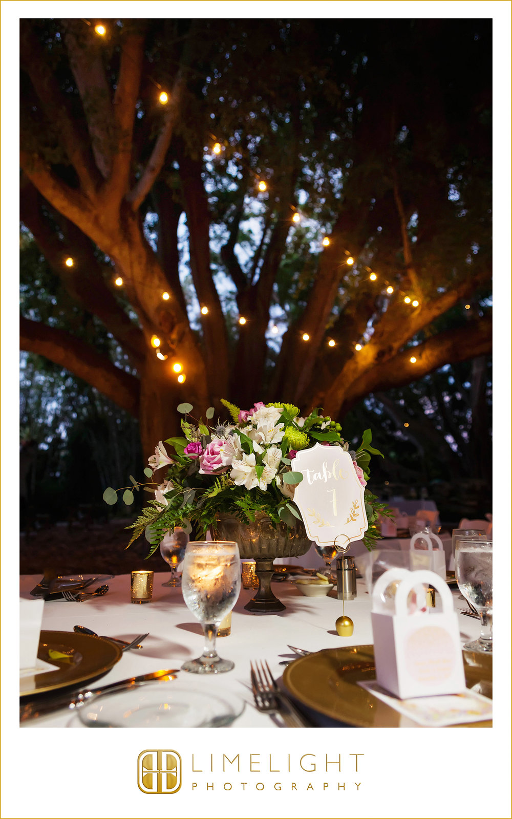 NICOLE AND ARJUNE FEATURED IN THE LIMELIGHT | MARIE SELBY GARDENS ...
