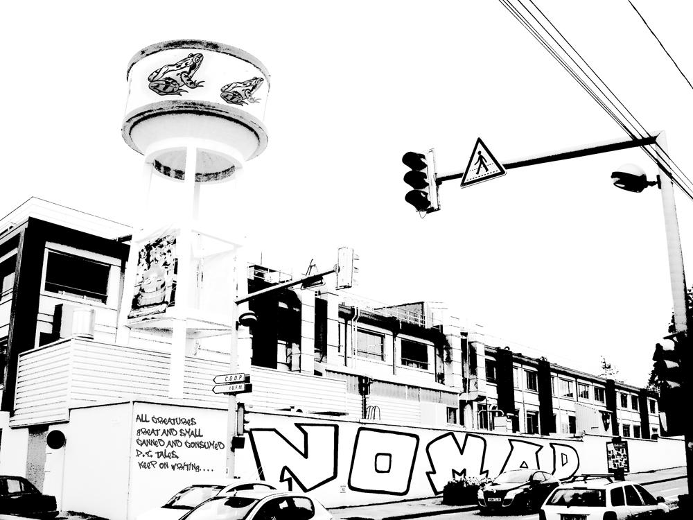 nomad2.jpg
